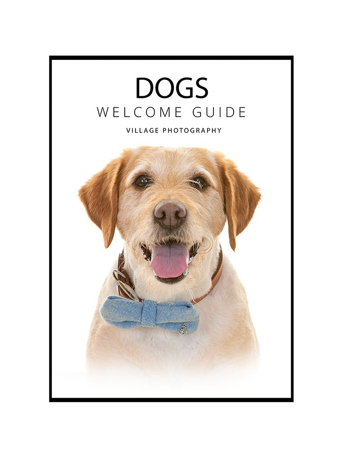 Dog Welcome Guide Front Cover - Newcastle dog photography